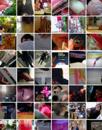 365days-of-flickr
